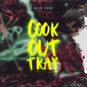 Artwork - Cook out tray